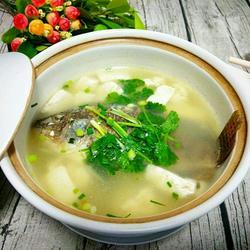 罗非鱼豆腐煲